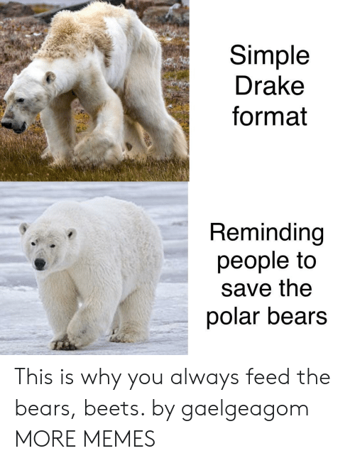 Dank, Drake, and Memes: Simple  Drake  format  Reminding  people to  save the  polar bears This is why you always feed the bears, beets. by gaelgeagom MORE MEMES