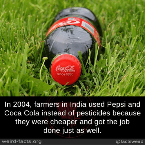Coca-Cola, Facts, and Memes: since 1886  In 2004, farmers in India used Pepsi and  Coca Cola instead of pesticides because  they were cheaper and got the job  done just as well.  weird-facts.org  @factsweird