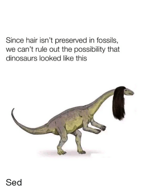 Since Hair Isn T Preserved In Fossils We Can T Rule Out