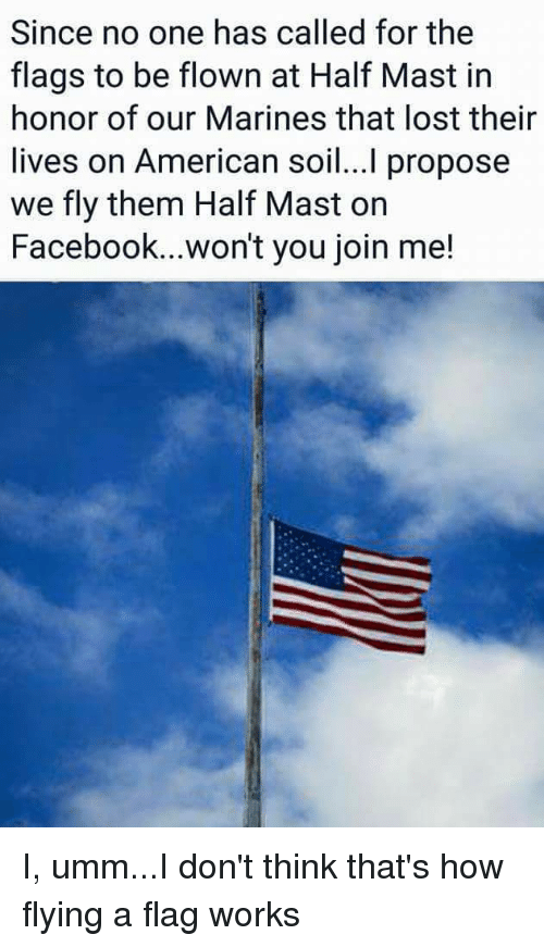 Facebook Lost And American Since No One Hased For The Flags To