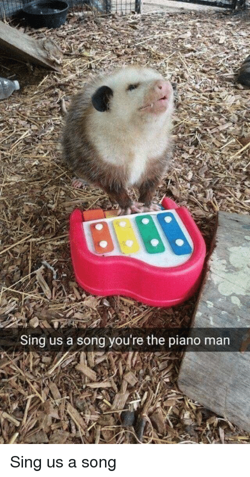 Would you sing us a song youre the piano man