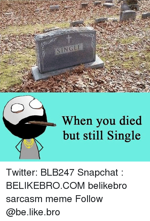 Be Like, Meme, and Memes: SINGLE  When you died  but still Single Twitter: BLB247 Snapchat : BELIKEBRO.COM belikebro sarcasm meme Follow @be.like.bro