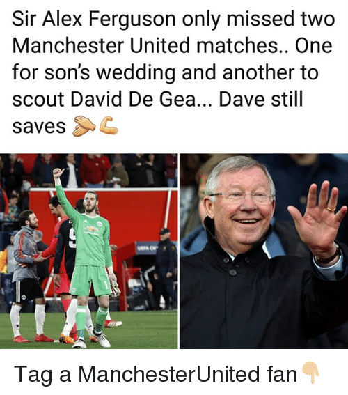 Memes, Manchester United, and Ferguson: Sir Alex Ferguson only missed two  Manchester United matches.. One  for son's wedding and another to  scout David De Gea... Dave still  savesC Tag a ManchesterUnited fan👇🏼