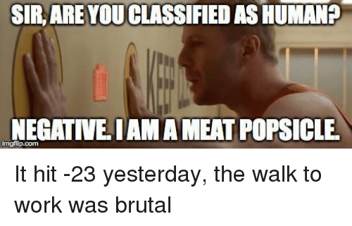 Sir Are You Classified As Human Negative Iama Meat Popsicle