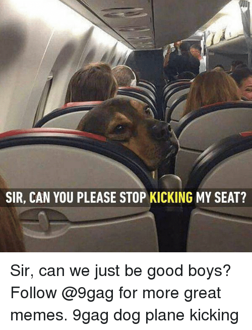 sir can you please stop kicking my seat sir can 24650835 ✅ 25 best memes about great memes great memes,Good Plane Memes