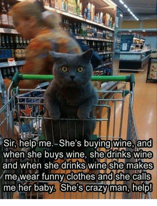 Clothes, Funny, and Memes: Sir, helb me. She's buvina wine, and  Sir, heipme.-She's buying wine, and  when she buys wine, she drinks wine  and when she drinks wine she makes  me wear funny clothes and she calls  me her baby. She's crazyman, helb  me her baby. Shes crazviman hel