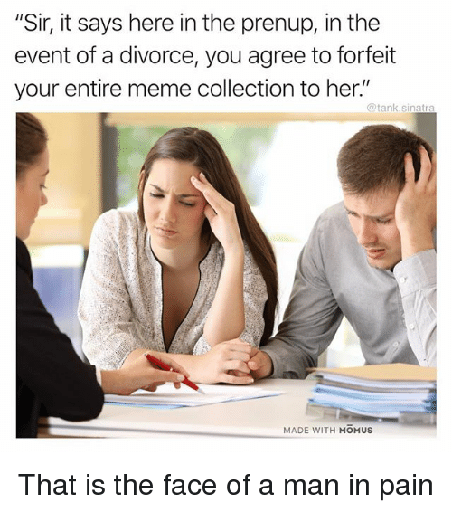 """Funny, Meme, and Divorce: """"Sir, it says here in the prenup, in the  event of a divorce, you agree to forfeit  your entire meme collection to her.""""  @tank.sinatra  MADE WITH MOMUS That is the face of a man in pain"""