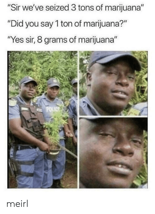"Marijuana, MeIRL, and Yes: ""Sir we've seized 3 tons of marijuana""  ""Did you say 1 ton of marijuana?""  ""Yes sir, 8 grams of marijuana""  MOLD POLICS meirl"
