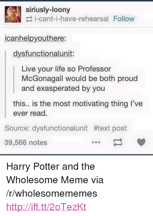 """Harry Potter, Life, and Meme: siriusly-loony  i-cant-i-have-rehearsal Follow  icanhelpyouthere:  dysfunctionalunit:  Live your life so Professor  McGonagall would be both proud  and exasperated by you  this.. is the most motivating thing I've  ever read.  Source: dysfunctionalunit #text post  39,566 notes <p>Harry Potter and the Wholesome Meme via /r/wholesomememes <a href=""""http://ift.tt/2oTezKt"""">http://ift.tt/2oTezKt</a></p>"""