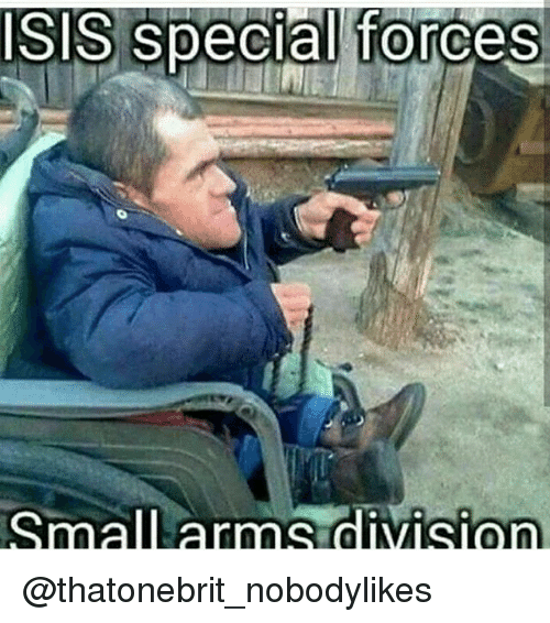 Memes, 🤖, and Division: SIS special forces  SmallLarnns division @thatonebrit_nobodylikes