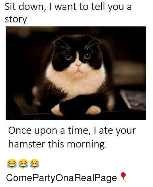 Funny, Hamster, and Once Upon a Time: Sit down, want to tell you a  Story  Once upon a time, ate your  hamster this morning. 😂😂😂 ComePartyOnaRealPage🎈