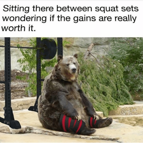 Dank, Squat, and 🤖: Sitting there between squat sets  wondering if the gains are really  worth it