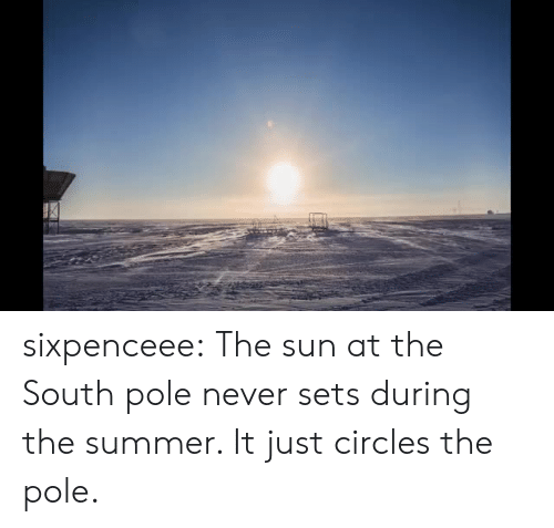 Tumblr, Summer, and Blog: sixpenceee:  The sun at the South pole never sets during the summer. It just circles the pole.