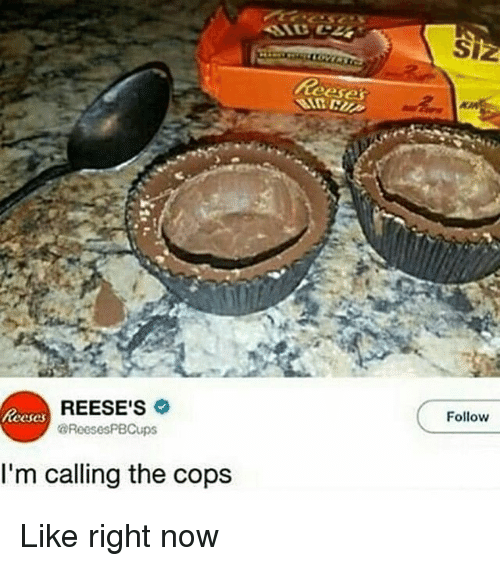 Memes, Reese's, and 🤖: Siz  Reese  REESE'S  @ReesesPBCups  Follow  eeses  I'm calling the cops Like right now