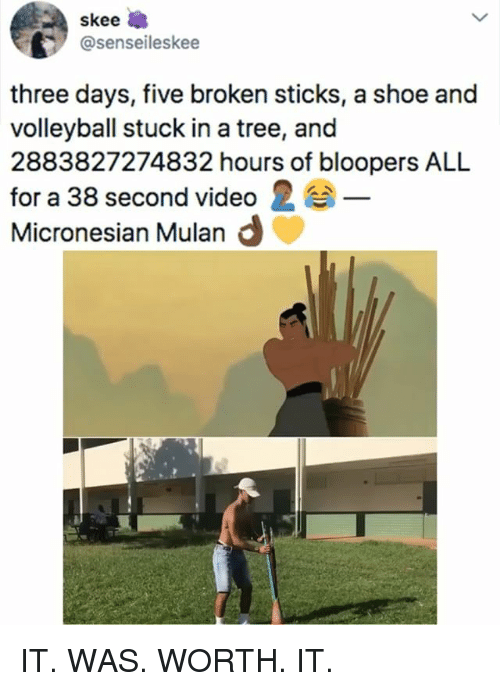Mulan, Tree, and Video: skee  @senseileskee  three days, five broken sticks, a shoe and  volleyball stuck in a tree, and  2883827274832 hours of bloopers ALL  for a 38 second video 2  Micronesian Mulan d IT. WAS. WORTH. IT.