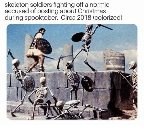 Skeleton Soldiers Fighting Off a Normie Accused of Posting