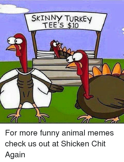 skinny turkey tee s 10 for more funny animal memes check