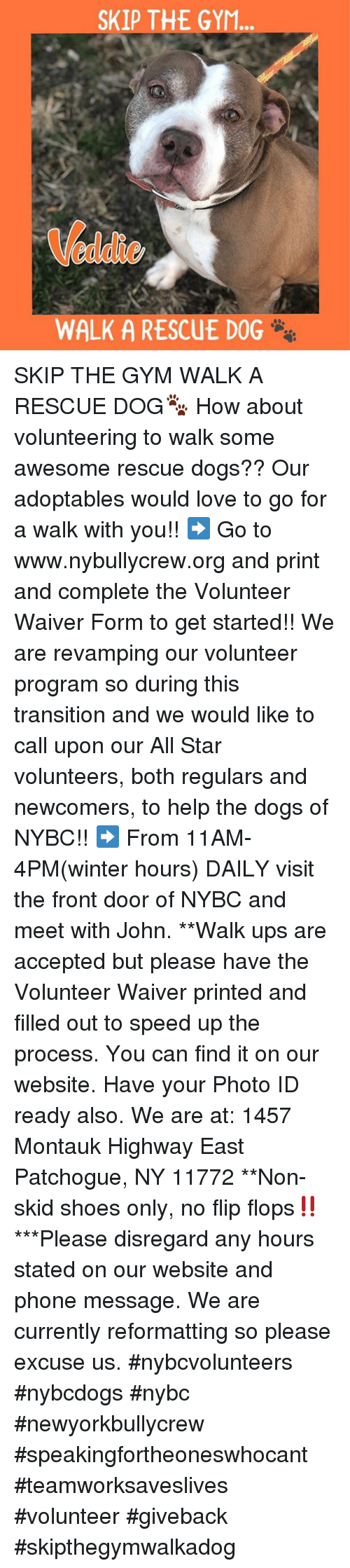 All Star, Dogs, and Gym: SKIP THE GYM  eddie  WALK A RESCUE DOG SKIP THE GYM WALK A RESCUE DOG🐾 How about volunteering to walk some awesome rescue dogs?? Our adoptables would love to go for a walk with you!!  ➡️ Go to www.nybullycrew.org and print and complete the Volunteer Waiver Form to get started!!    We are revamping our volunteer program so during this transition and we would like to call upon our All Star volunteers, both regulars and newcomers, to help the dogs of NYBC!! ➡️ From 11AM-4PM(winter hours)  DAILY visit the front door of NYBC and meet with John.   **Walk ups are accepted but please have the Volunteer Waiver printed and filled out to speed up the process. You can find it on our website. Have your Photo ID ready also.  We are at: 1457 Montauk Highway East Patchogue, NY 11772 **Non-skid shoes only, no flip flops‼️ ***Please disregard any hours stated on our website and phone message. We are currently reformatting so please excuse us.  #nybcvolunteers #nybcdogs  #nybc #newyorkbullycrew  #speakingfortheoneswhocant #teamworksaveslives #volunteer #giveback #skipthegymwalkadog