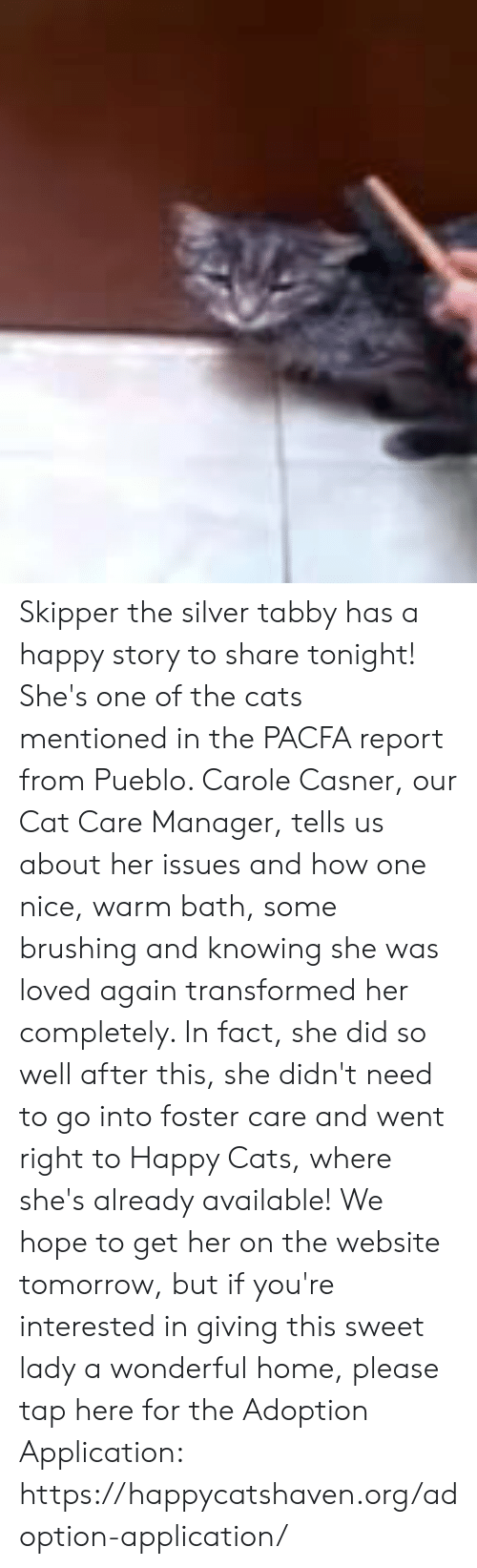 Cats, Memes, and Happy: Skipper the silver tabby has a happy story to share tonight! She's one of the cats mentioned in the PACFA report from Pueblo. Carole Casner, our Cat Care Manager, tells us about her issues and how one nice, warm bath, some brushing and knowing she was loved again transformed her completely. In fact, she did so well after this, she didn't need to go into foster care and went right to Happy Cats, where she's already available! We hope to get her on the website tomorrow, but if you're interested in giving this sweet lady a wonderful home, please tap here for the Adoption Application: https://happycatshaven.org/adoption-application/