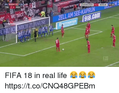Fifa, Life, and Soccer: sky SPORTE1Ho  TSG 2-1 M05  LEVERKUSEN  0-2  BERLIN  menia FIFA 18 in real life 😂😂😂 https://t.co/CNQ48GPEBm