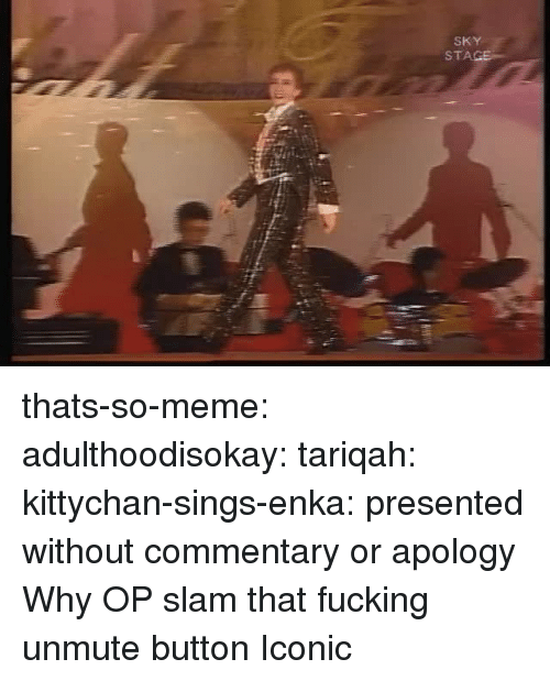Fucking, Meme, and Target: SKY  STA thats-so-meme:  adulthoodisokay:  tariqah:  kittychan-sings-enka:  presented without commentary or apology  Why OP   slam that fucking unmute button   Iconic