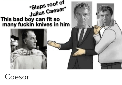 Bad, History, and Julius Caesar: *Slaps roof of  Julius Caesar*  many fuckin knives in him  This bad boy can fit sc Caesar