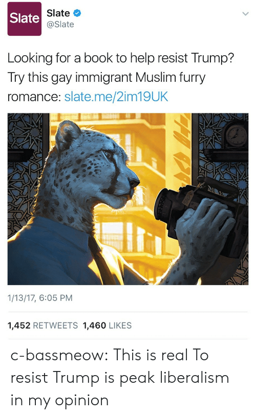 Muslim, Tumblr, and Blog: Slate  Slate  @Slate  Looking for a book to help resist Trump?  Try this gay immigrant Muslim furry  romance: slate.me/2im19UK  1/13/17, 6:05 PM  1,452 RETWEETS 1,460 LIKES c-bassmeow:  This is real  To resist Trump is peak liberalism in my opinion