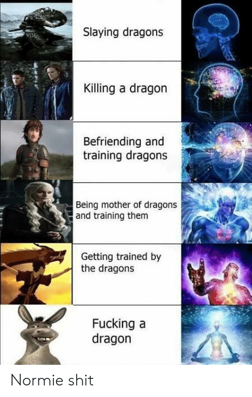 Fucking, Shit, and Normie: Slaying dragons  Killing a dragon  Befriending and  training dragons  Being mother of dragons  and training them  Getting trained by  the dragons  Fucking a  dragon   Normie shit