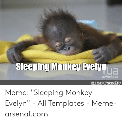 "Arsenal, Meme, and Monkey: Sleeping Monkey Evelyn  ua  prikol.i.ua  meme-arsenalry Meme: ""Sleeping Monkey Evelyn"" - All Templates - Meme-arsenal.com"