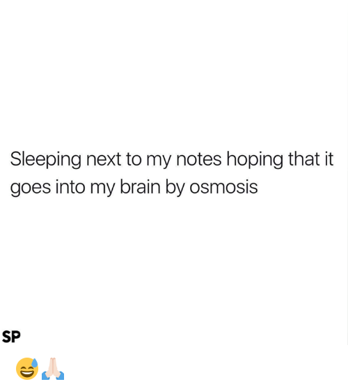 Brain, Sleeping, and Next: Sleeping next to my notes hoping that it  goes into my brain by osmosis  SP 😅🙏🏻