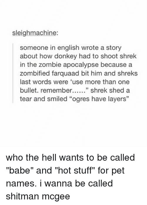 """Donkey, Shrek, and Stuff: sleighmachine:  someone in english wrote a story  about how donkey had to shoot shrek  in the zombie apocalypse because a  zombified farquaad bit him and shreks  last words were 'use more than one  bullet. remember shrek shed a  tear and smiled """"ogres have layers"""" who the hell wants to be called """"babe"""" and """"hot stuff"""" for pet names. i wanna be called shitman mcgee"""