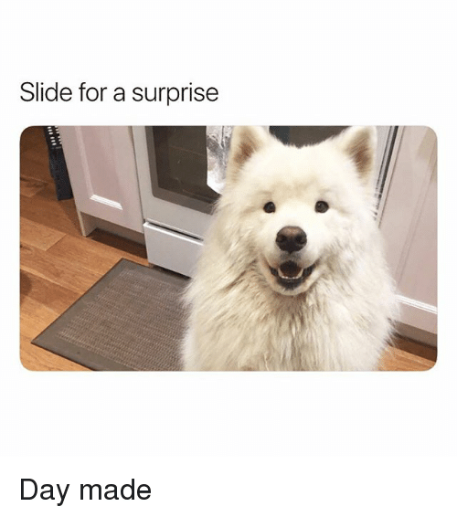 Funny, Day, and Made: Slide for a surprise Day made