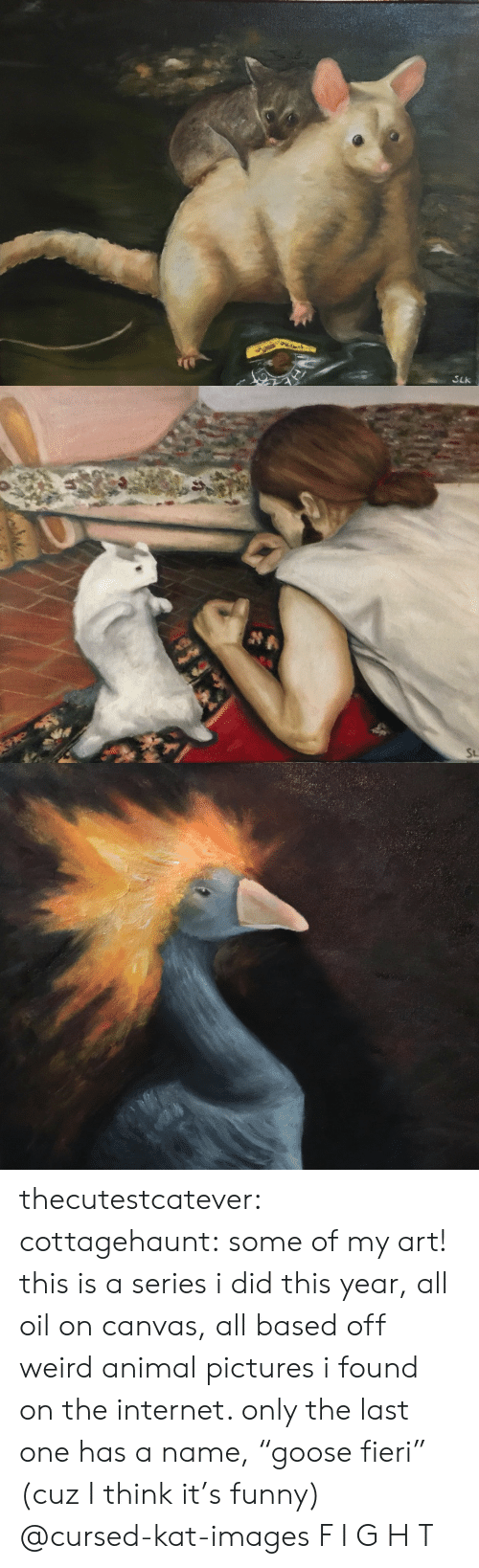 "Funny, Internet, and Tumblr: SLk   St thecutestcatever:  cottagehaunt:  some of my art! this is a series i did this year, all oil on canvas, all based off weird animal pictures i found on the internet. only the last one has a name, ""goose fieri"" (cuz I think it's funny)  @cursed-kat-images   F I G H T"