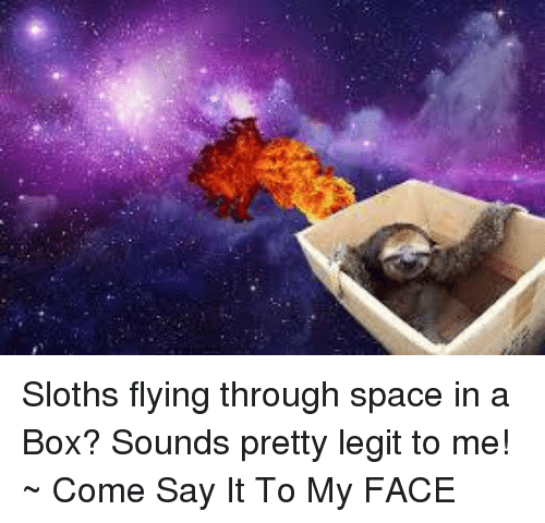 Boxing, Memes, and Say It: Sloths flying through space in a Box? Sounds pretty legit to me! ~ Come Say It To My FACE