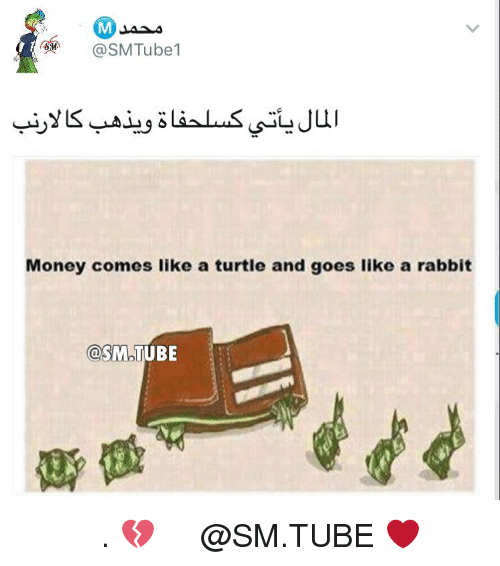 Memes, Rabbit, and Tube: @SM Tube  Money comes like a turtle and goes like a rabbit  OSMOUUBE الفلوس 💔 . تابع حساب محمد @SM.TUBE ❤️