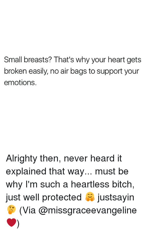 Bitch, Heart, and Girl Memes: Small breasts? That's why your heart gets  broken easily, no air bags to support your  emotions. Alrighty then, never heard it explained that way... must be why I'm such a heartless bitch, just well protected 🤗 justsayin 🤔 (Via @missgraceevangeline ❤)