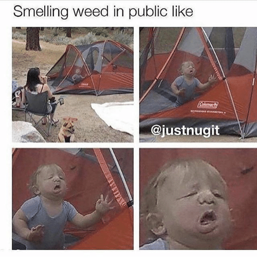 Memes, Weed, and 🤖: Smelling weed in public like  @justnugit