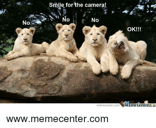 Memes, Camera, and Smile: smile for the camera!  No  No  OK!!!  Mumecenter  memecenter com www.memecenter.com