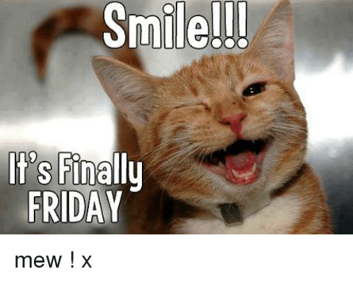 Memes, 🤖, and Mew: Smile!!!  It's  Finally  FRIDAY mew  !   x
