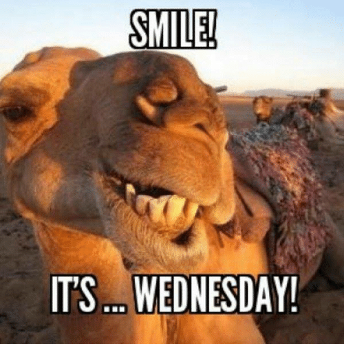 Memes, 🤖, and Its Wednesday: SMILE!  ITS. WEDNESDAY!