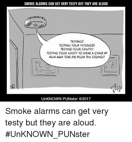 Smoke Alarms Can Get Very Testy But They Are Aloud Testing