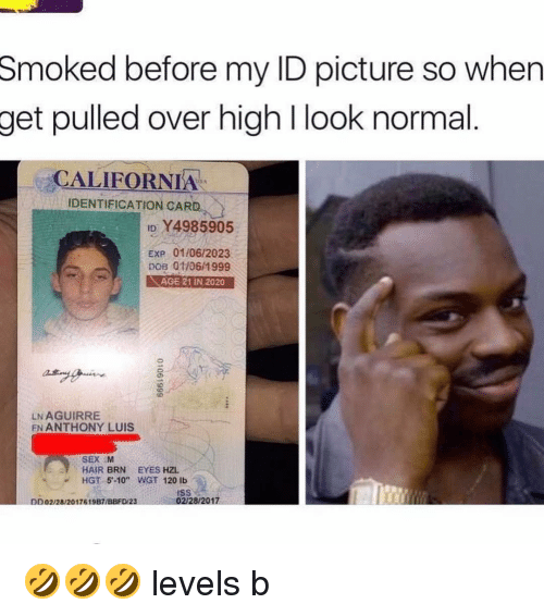 Fn Smoked 01062023 Luis 1999 California Get Before So Id Y4985905 2020 01106 Look L Anthony Dd02282017619 02282017 Iss Age Pulled High My Dob Lbs 120 Wgt Card 21 -10 Hgt Identification Picture When 5 Hzl Over Aguirre Eyes M In Exp Brn Ln Hair Sex Normal