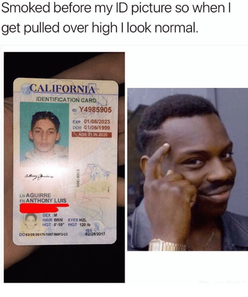 """Normal, Look, and High: Smoked before my ID picture so when I  get pulled over high look normal  CALIFORNIA  IDENTIFICATION CARD  ID Y4985905  Exp 01106/2023  DOB 01/06/1999  AGE 21 IN 2020  LN AGUIRRE  EN ANTHONY LUIS.  SEX M  HAIR BRN EYES HZL.  HGT 5-10"""" WGT 120 lb  SS  02/28/2017  DD02/28/201761987/BBFD/23"""