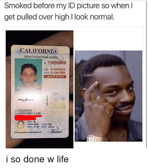 """Life, Memes, and California: Smoked before my ID picture so when I  get pulled over high l look normal  CALIFORNIA  IDENTIFICATION CARD  ID Y4985905  Exp 01/06/2023  DOB 01h06 1999  VRAGE 21IN 2020  LN AGUIRRE  EN ANTHONY LUIS  HAIR BRN  EYES HZL  HGT 5.10"""" WNGT 120 lb  02/28/2017  DD02/28/2017619B1/BBFD/23 i so done w life"""
