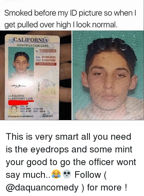 Identification Get Picture Ln Aguirre High I Card Age In 202 Anthony Over Look Smart Very Smoked 01061999 En All Nee You Before 01062023 Dob Is Normal This M 02282017 Pulled 5-10 Wgt Ib Hgt 120 Luis So Exp 21 California Hzl When My Id Ees Brn Hair Sex