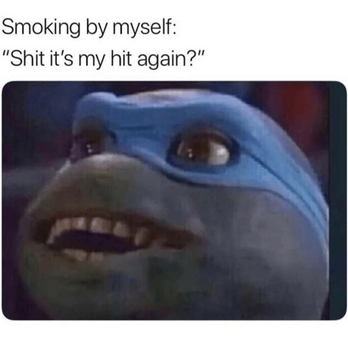 "Memes, Shit, and Smoking: Smoking by myself  ""Shit it's my hit again?"""