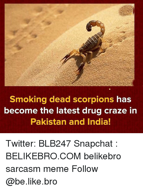 Be Like, Meme, and Memes: Smoking dead scorpions has  become the latest drug craze in  Pakistan and India! Twitter: BLB247 Snapchat : BELIKEBRO.COM belikebro sarcasm meme Follow @be.like.bro
