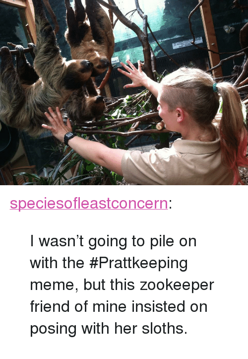 """Meme, Tumblr, and Blog: SNAKE? <p><a href=""""http://speciesofleastconcern.tumblr.com/post/121844489490/i-wasnt-going-to-pile-on-with-the-prattkeeping"""" class=""""tumblr_blog"""">speciesofleastconcern</a>:</p>  <blockquote><p>I wasn't going to pile on with the #Prattkeeping meme, but this zookeeper friend of mine insisted on posing with her sloths.</p></blockquote>"""