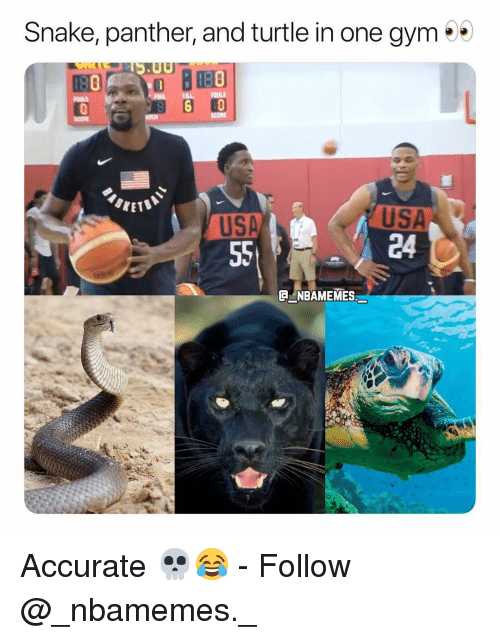 Gym, Memes, and Snake: Snake, panther, and turtle in one gym  SCORE  SKET  USA  24  USA  ENBAMEMES Accurate 💀😂 - Follow @_nbamemes._