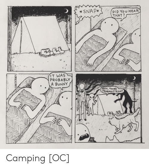 Yeah, Snap, and Pid: SNAP*  PID You HEAR  THAT?  IT WAS  PROBABLY  A BUNNY  YEAH, YOURE  PROBABLY RIGHT  ACCILLTT Camping [OC]